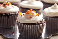 Пирожные шоколада изысканные с брызгают и замораживать Стоковое Изображение RF