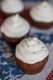 Пирожные шоколада с замораживать плавленого сыра Стоковые Фотографии RF