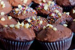 Пирожные шоколада Стоковые Фотографии RF