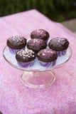 Пирожня шоколада Стоковое фото RF