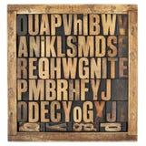Письма алфавита год сбора винограда Стоковая Фотография RF