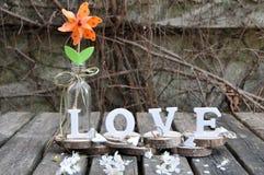 Письма говоря вне влюбленность по буквам слова Стоковые Изображения