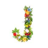 Письма листьев и цветков стоковые фотографии rf