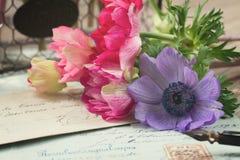 Письма ручки и антиквариата Quill с ветреницей цветут Стоковые Изображения RF