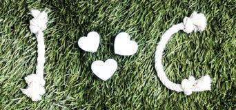 Письма i и c и 3 бумажных выхода отрезка сердца на траве Стоковая Фотография