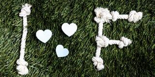 Письма i и f и 3 бумажных выхода отрезка сердца на траве Стоковые Фотографии RF