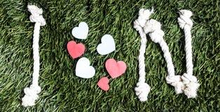 Письма i и n и 3 бумажных выхода отрезка сердца на траве Стоковая Фотография