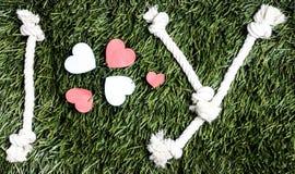 Письма i и y и 3 бумажных выхода отрезка сердца на траве Стоковые Фотографии RF