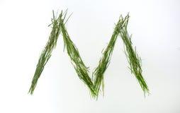 Письмо алфавита написанное с свежей зеленой травой Стоковые Изображения RF