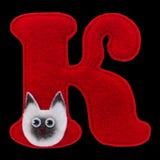 Письмо кириллического алфавита сделанного из изолированного войлока на черноте Стоковая Фотография