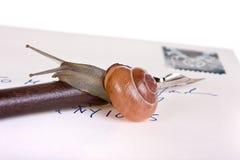 письмо медленное Стоковые Фотографии RF