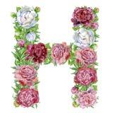 Письмо h цветков акварели иллюстрация штока