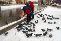 Питание группы людей с утками и голубями хлеба Стоковые Фото
