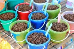 Питание для животного Стоковая Фотография RF