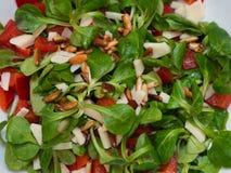 Питательный свежий салат стоковая фотография