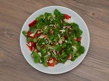 Питательный свежий салат стоковые фотографии rf
