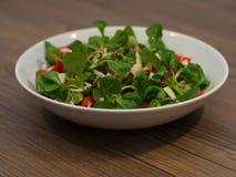 Питательный свежий салат стоковые изображения rf