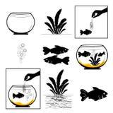 Питаться рыб аквариума, круглый аквариум, завод, белая предпосылка, набор вектора силуэта матовой черноты добавил бесплатная иллюстрация