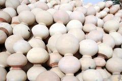 питчеры глины Стоковые Фото