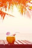 Питье воды кокоса служило в кокосе с выпивая соломой на Стоковые Изображения