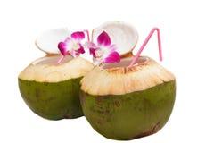 Питье воды кокоса. Стоковые Фотографии RF