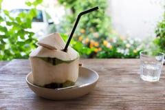 Питье воды кокоса Стоковое Изображение RF
