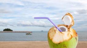 Питье воды кокоса Стоковое Фото