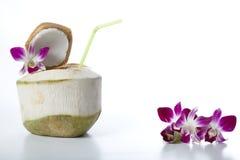 Питье воды кокоса Стоковое фото RF