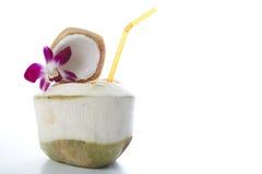 Питье воды кокоса Стоковые Изображения RF