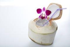Питье воды кокоса Стоковая Фотография