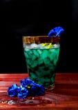 Питье гороха бабочки Стоковое Фото