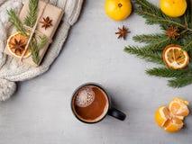 Питье горячего шоколада зимы в чашке на tangerines украшениях серых конкретных предпосылки праздничных копирует космос Стоковое Изображение RF