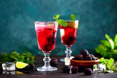 Питье ежевичника, вид спереди стоковые фотографии rf