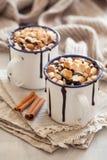 Питье зимы циннамона зефиров горячего шоколада нравов ` s мини стоковая фотография rf