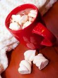 Питье зимы Стоковые Фотографии RF