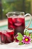 Питье известки клюквы Стоковое Фото