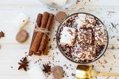 Питье какао с marshmellows Стоковые Изображения
