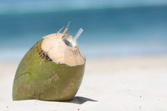 питье кокоса Стоковое фото RF