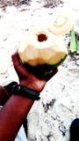 Питье кокоса стоковое изображение rf