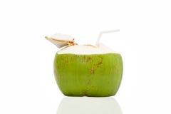 Питье кокоса Стоковая Фотография RF