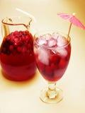 Питье коктеила пунша с плодоовощ Стоковые Изображения
