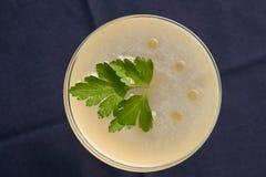 Питье коктеиля Petrucho на таблице бара в ресторане Стоковое Изображение RF