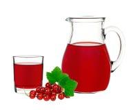 Питье красной смородины в стекле и графинчике с смородиной ягод Стоковое Изображение