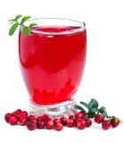 Питье клюкв плодоовощ стоковые фото