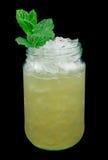 Питье огромного успеха вискиа Стоковое фото RF