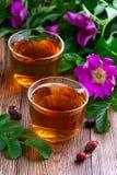 Питье от высушенного плода шиповника Стоковые Изображения RF