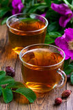 Питье от высушенного плода шиповника Стоковое Фото