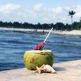 питье пляжа Стоковые Фото
