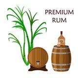 Питье, ром, стекло, бочонки и сахарный тростник спирта Плоский стиль бесплатная иллюстрация