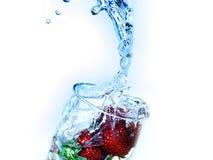питье свежее стоковое изображение